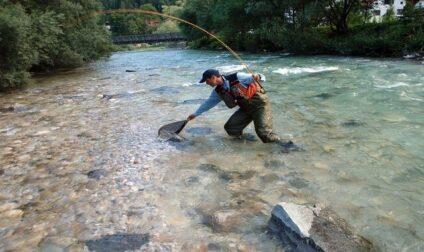 pêcher un ombre en mouche sèche