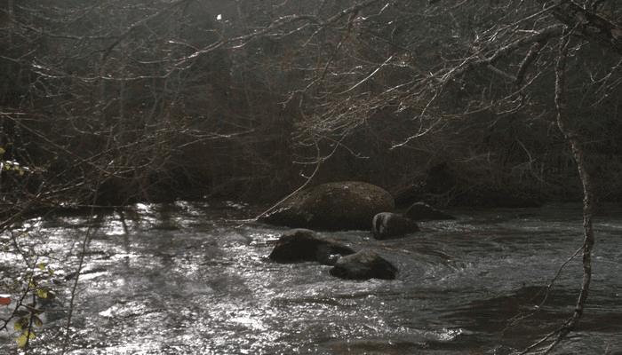 ouverture de la truite 2015