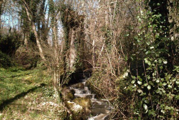 ouverture loupée ruisseau