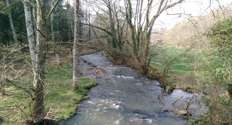 Ouverture truite en Sarthe petite riviere