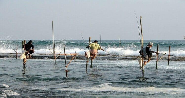 pêche sur échasse fishermen Sri Lanka