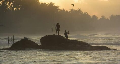 pêche sur échasse sri lanka