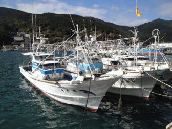 Japon - Bateau - Fishing trip au Japon