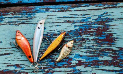Canne à pêche - Leurres de pêche
